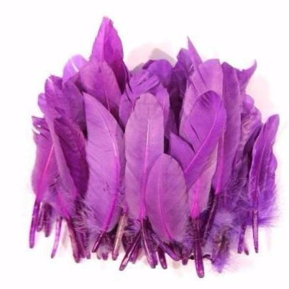 Tiny Goose Pointer Feathers 10 grams - Purple