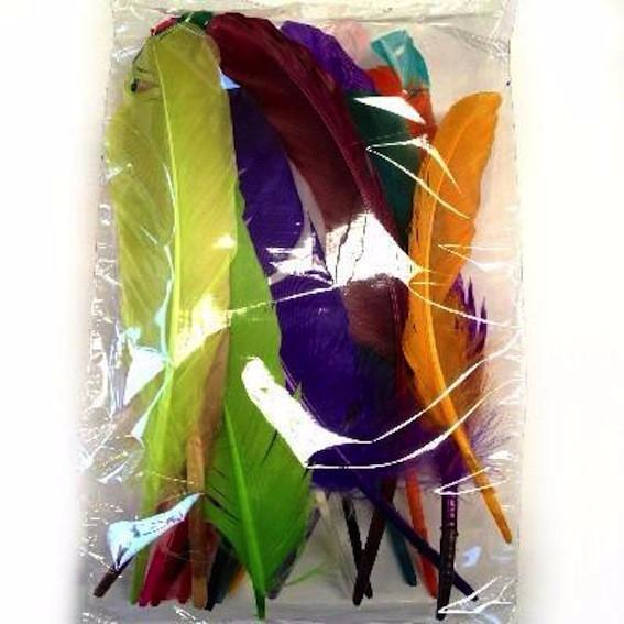 Goose Pointer Feathers 10 grams - Assorted