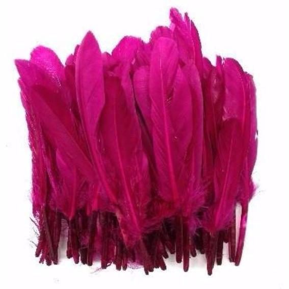 Tiny Goose Pointer Feathers 10 grams - Magenta