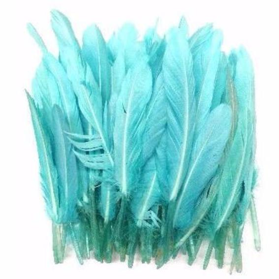 Tiny Goose Pointer Feathers 10 grams - Spearmint
