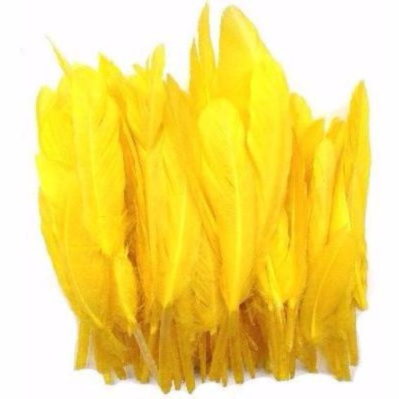 Tiny Goose Pointer Feathers 10 grams - Yellow