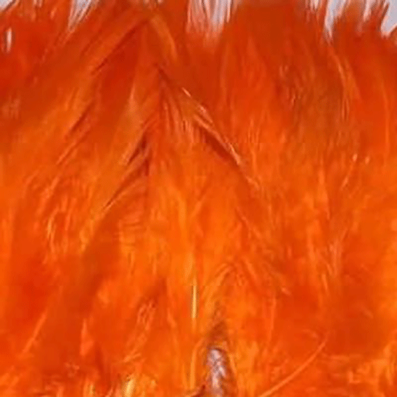Orange Hackle Strung per 10cm