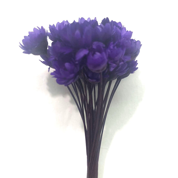 Natural Dry Mini Daisy Flower Stems - Purple