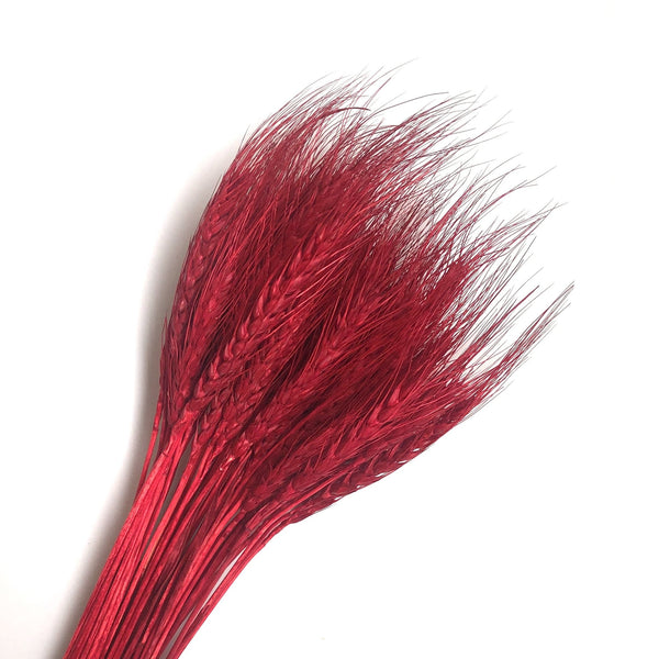 Natural Dry Wheat Grass Stalk Stems x 10 pcs - Red