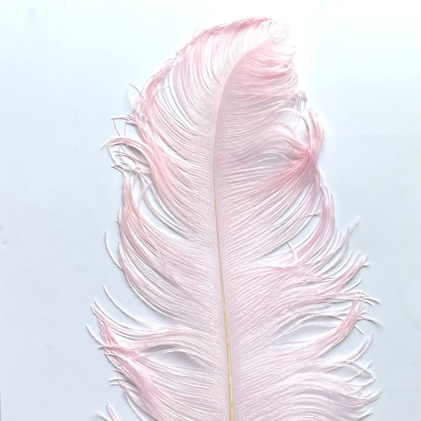 "Ostrich Wing Feather Plumes 60-65cm (24-26"") - Light Pink"