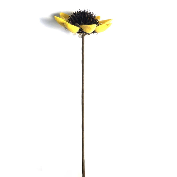 Natural Dried Thistle Daisy Flower - Yellow Style 3