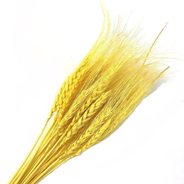 Natural Dry Wheat Grass Stalk Stems x 10 pcs - Yellow