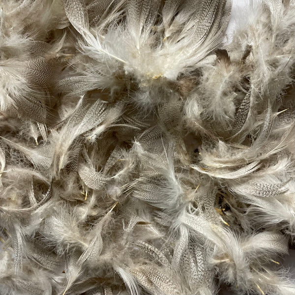 Natural Mottled Mallard Duck Feather Plumage Pack of 10 grams