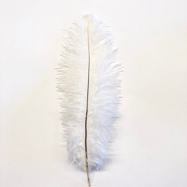 Ostrich Blondine Feather 25-40cm x 5 pcs - White ((SECONDS))
