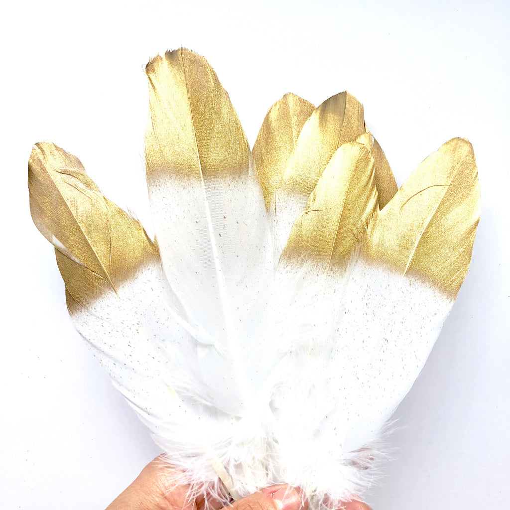 Goose Pointer Feather Gold Tipped x 10 pcs - White