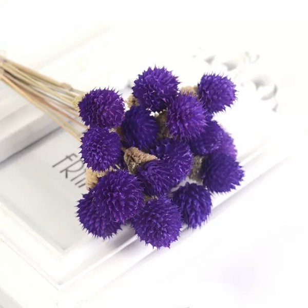 Natural Dried Gomphrena Globosa Flower Stem Bunch - Purple