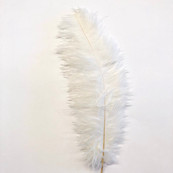 Ostrich Blondine Feather 25-40cm x 5 pcs - Ivory ((SECONDS))