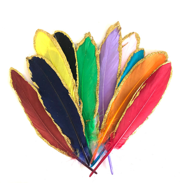 Gold Glitter Edge Goose Pointer Feathers x 12 pcs - Assorted