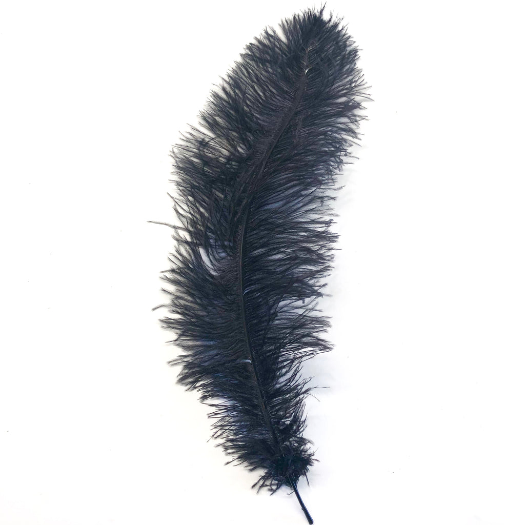 Ostrich Blondine Feather 25-40cm - Black