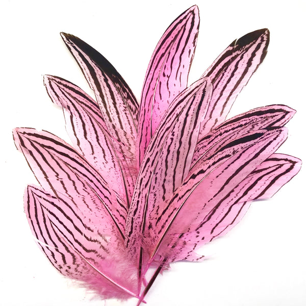 "Under 6"" Silver Pheasant Tail Feather x 10 pcs - Hot Pink"