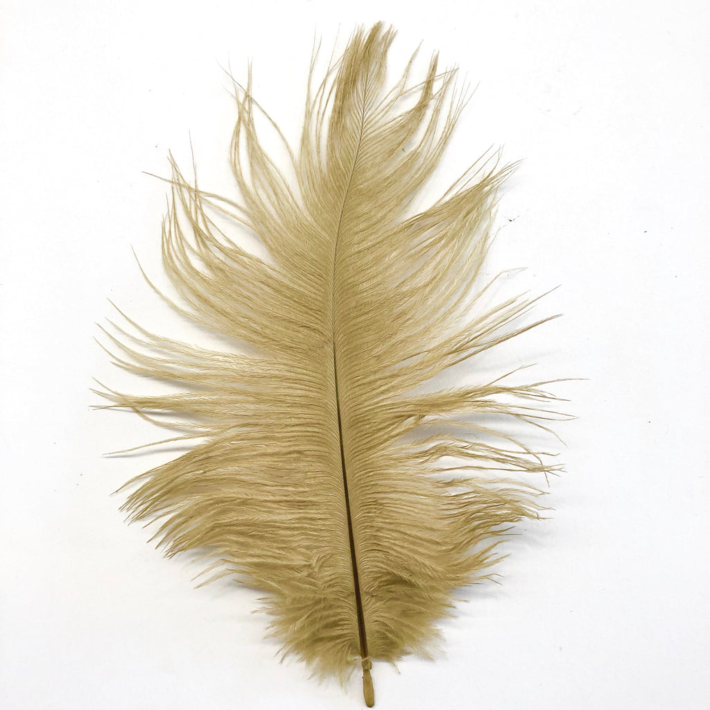 Ostrich Feather Drab 6-15cm x 20 - Gold