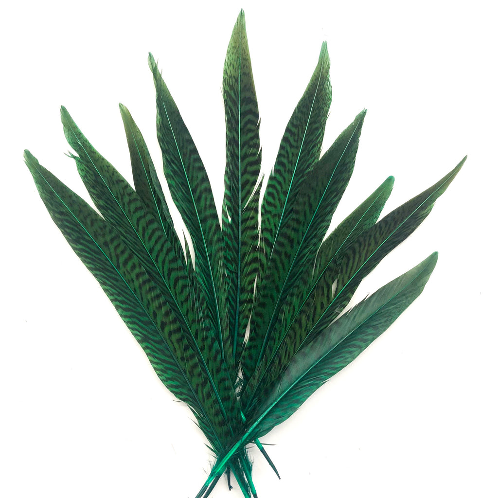 "6"" to 10"" Golden Pheasant Side Tail Feather x 10 pcs - Green"