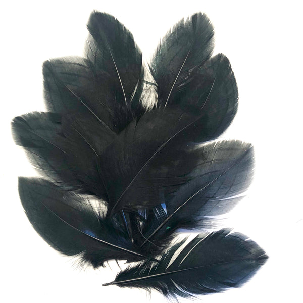 "Under 6"" Silver Pheasant Tail Feather x 10 pcs - Black"