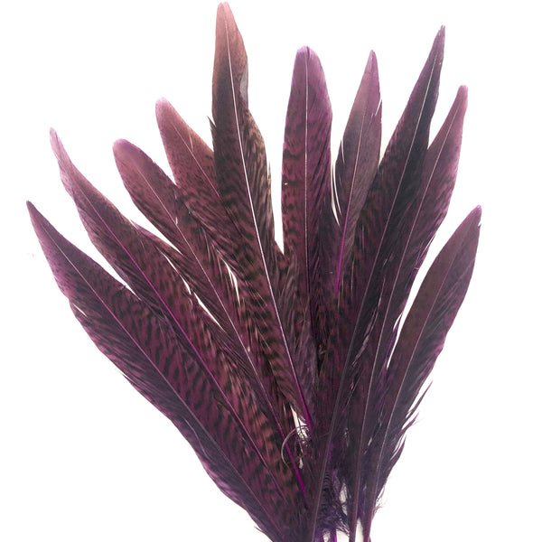 "6"" to 10"" Golden Pheasant Side Tail Feather x 10 pcs - Eggplant"
