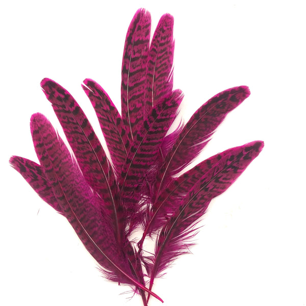 "Under 6"" Golden Pheasant Side Tail Feather x 10 pcs - Cerise"
