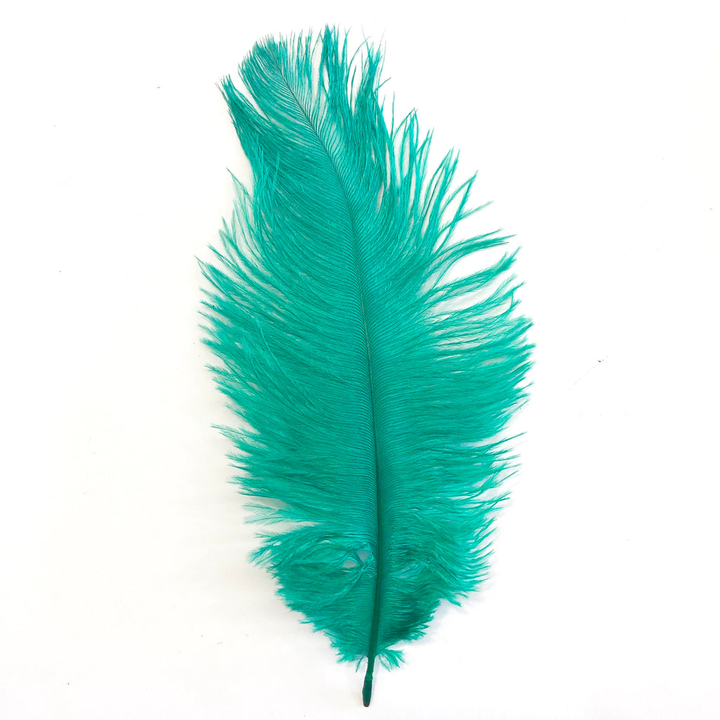 Ostrich Feather Drab 6-15cm x 20 - Apple Green
