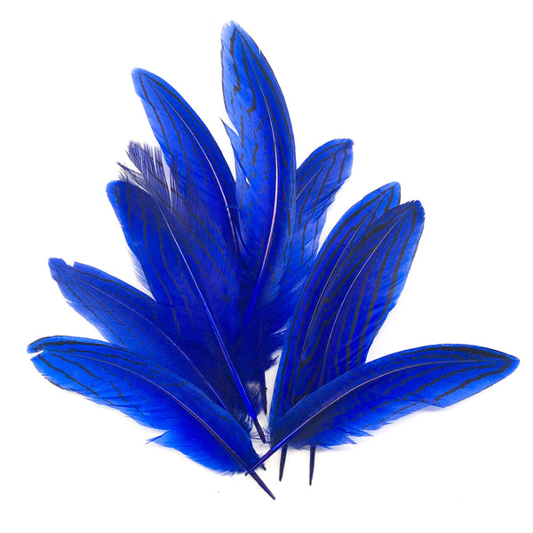 "Under 6"" Silver Pheasant Tail Feather x 10 pcs - Royal Blue"