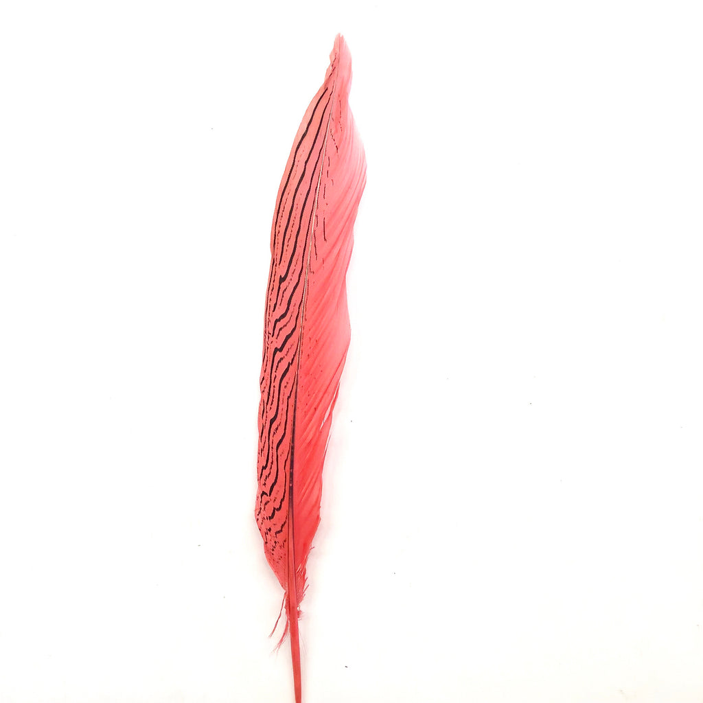 "6"" to 10"" Silver Pheasant Tail Feather - Dusty Pink"