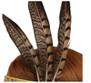 Indian Tribal Bohemian Gypsy Feather Headdress Fancy Dress - Style 3