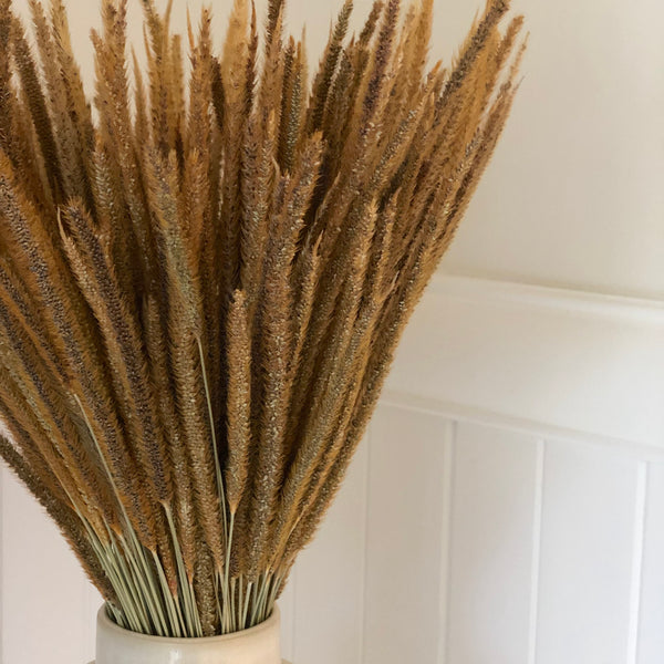 Dried Kirin Grass Stems x 10 pcs - Natural