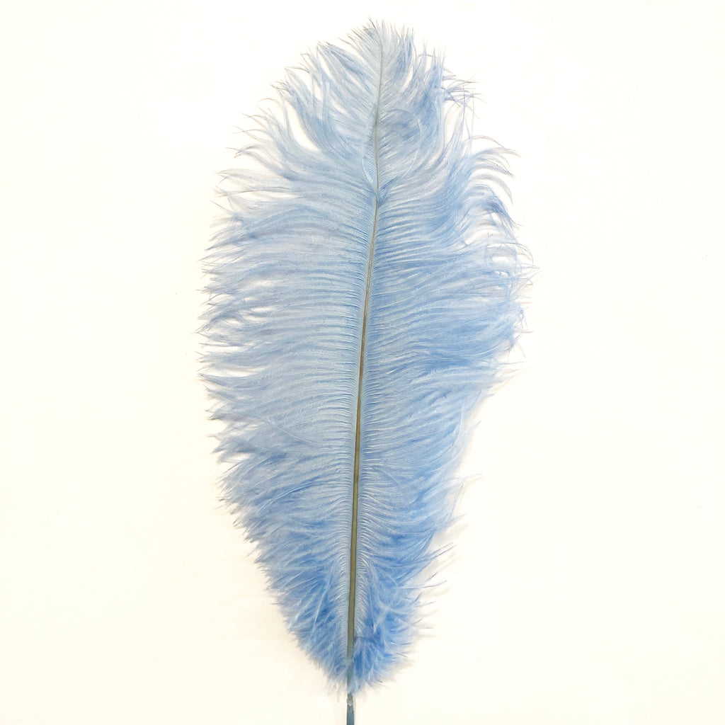 Ostrich Drab Feather 27-32cm - Light Blue *Seconds* Pack of 5