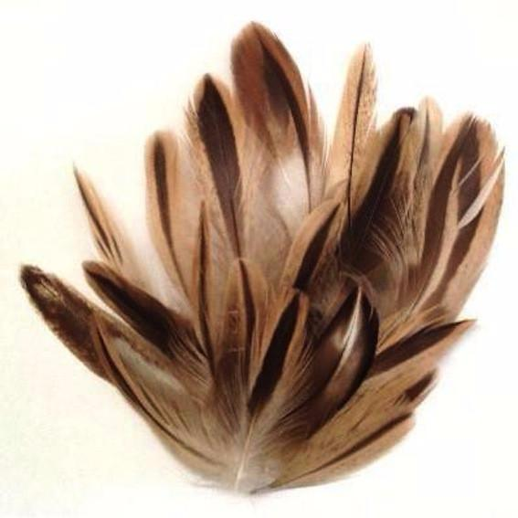 Natural Brown/Black Mallard Duck Feather Plumage 1 gram