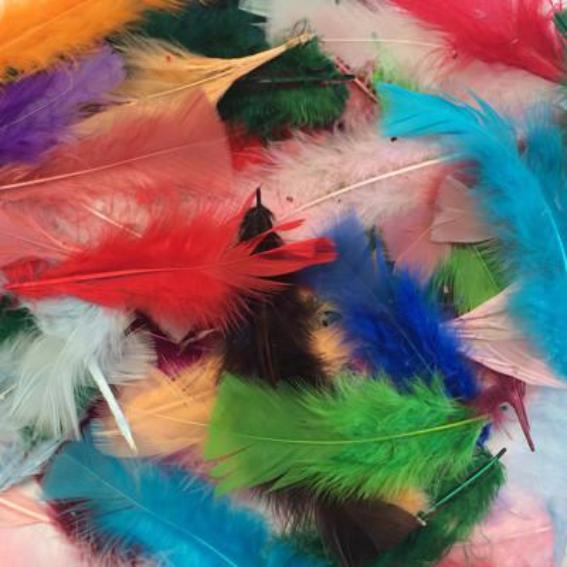 Flat Top Marabou Feather Pack 10 grams - Assorted