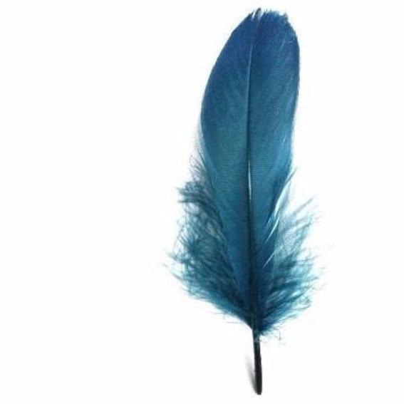 Goose Nagoire Feathers 10 grams - Teal