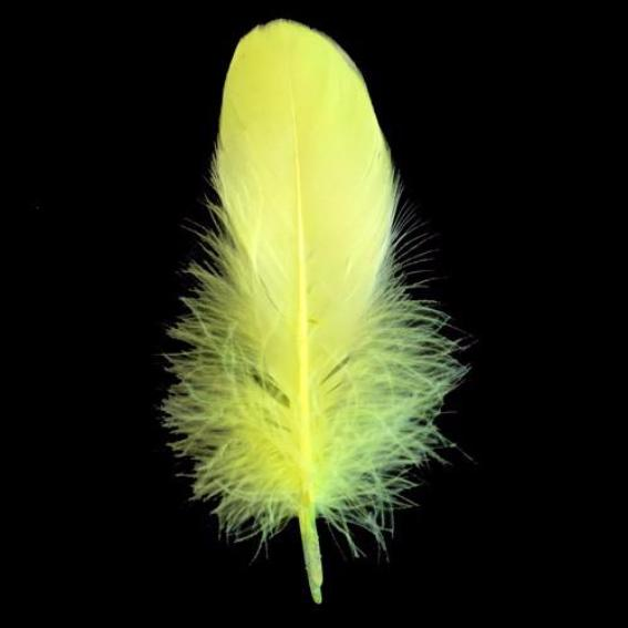 Goose Nagoire Feathers 10 grams - Neon Yellow
