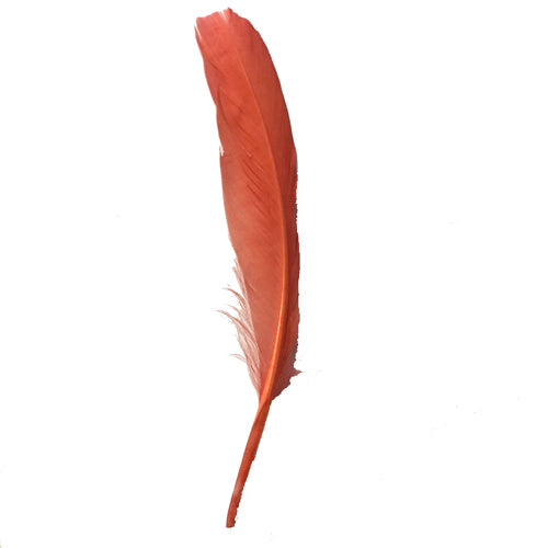 Goose Pointer Feathers 10 grams - Salmon