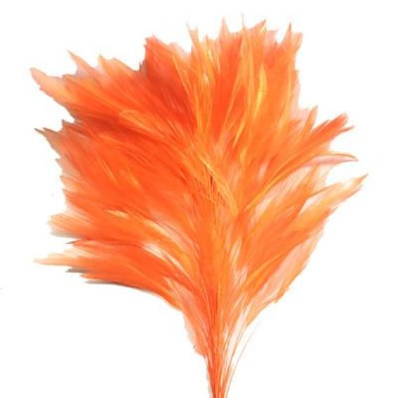 Orange Coque Feather Tree