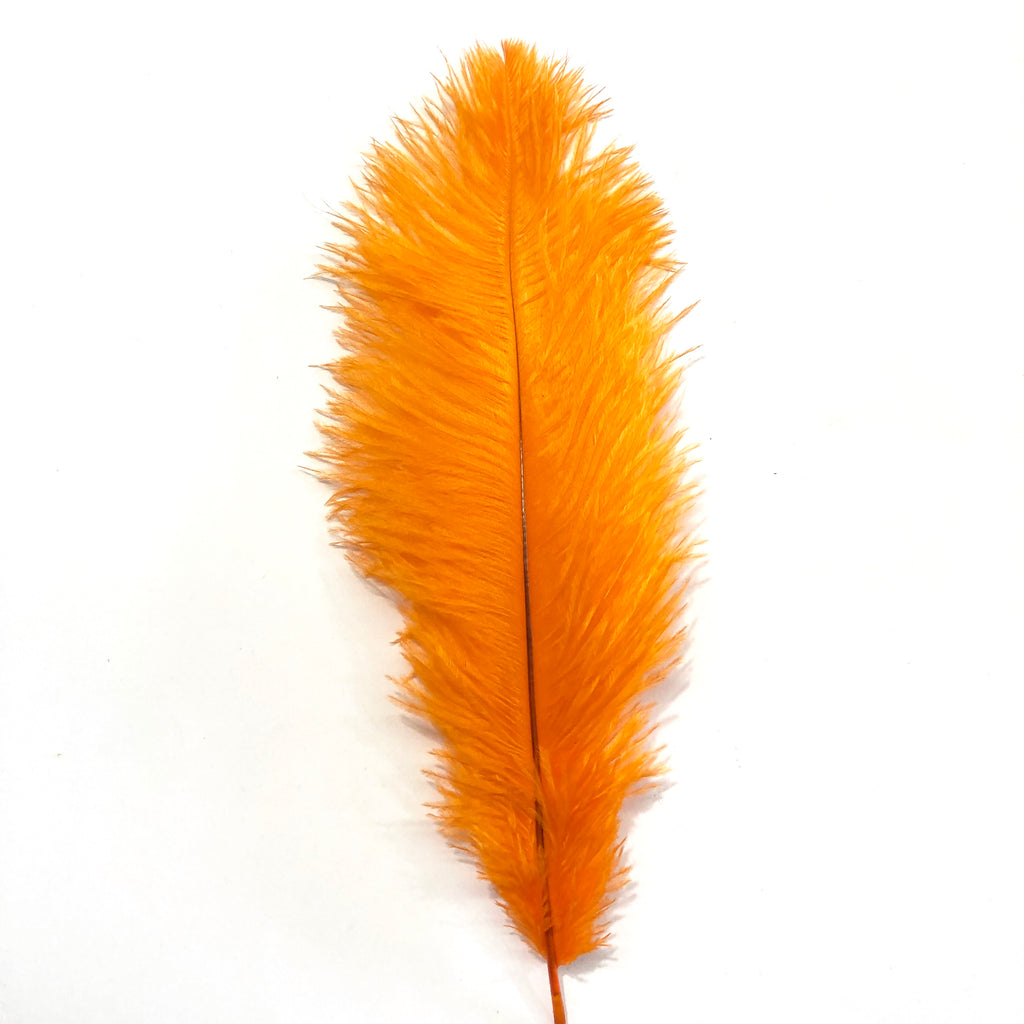 Ostrich Drab Feather 27-32cm - Orange