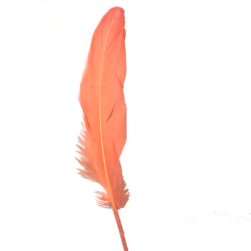 Goose Pointer Feathers 10 grams - Apricot