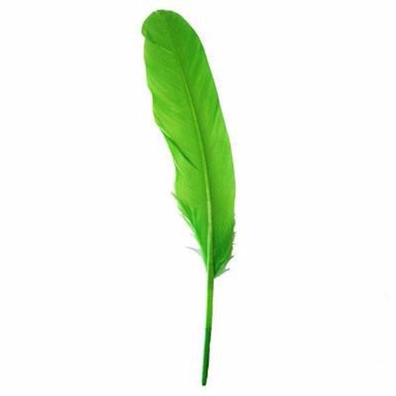 Goose Pointer Feathers 10 grams - Lime Green