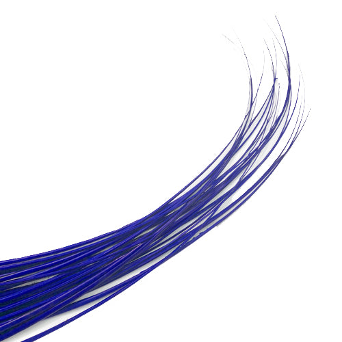 Ostrich Feather Quill Spine Barb - Royal Blue