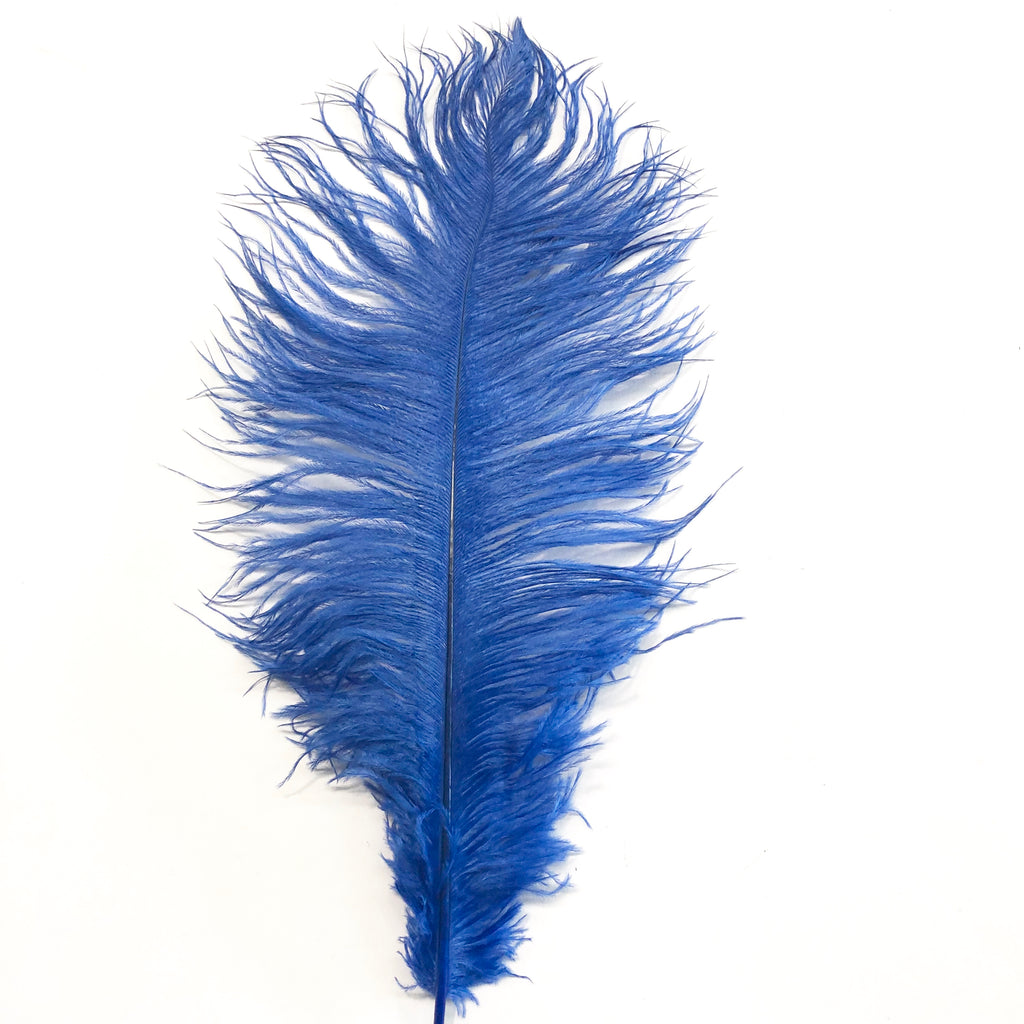 Ostrich Drab Feather 27-32cm - Royal Blue