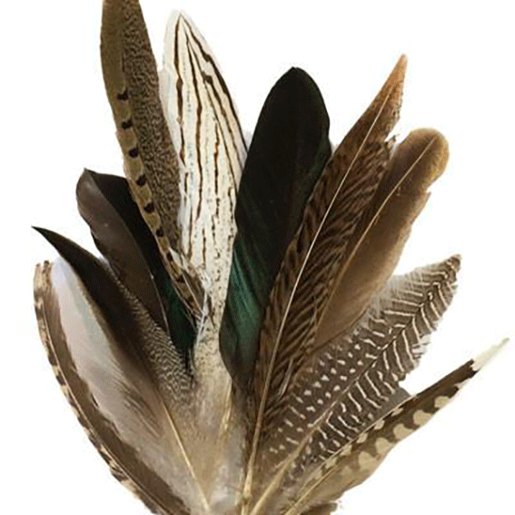 Small Natural Feathers 10-20cm Mixed Pack x 10