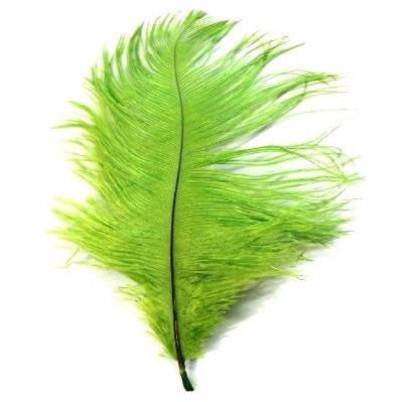Lime Green Drab 6-15cm *Seconds* Pack of 5