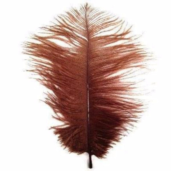 Ostrich Feather Drab 6-15cm x 5 - Rust Brown ((SECONDS))
