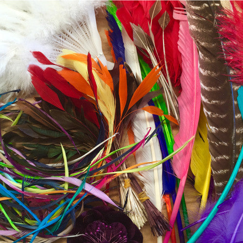 Feather Millinery & Craft Art Surprise Pack