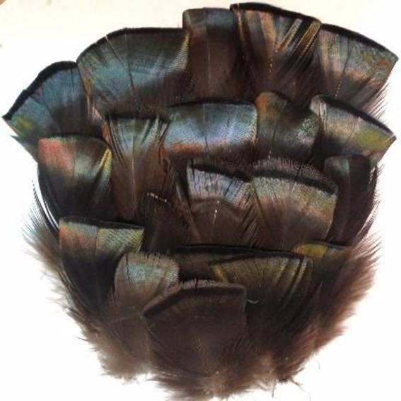 Bronze Turkey T Base Feather Plumage 10grams
