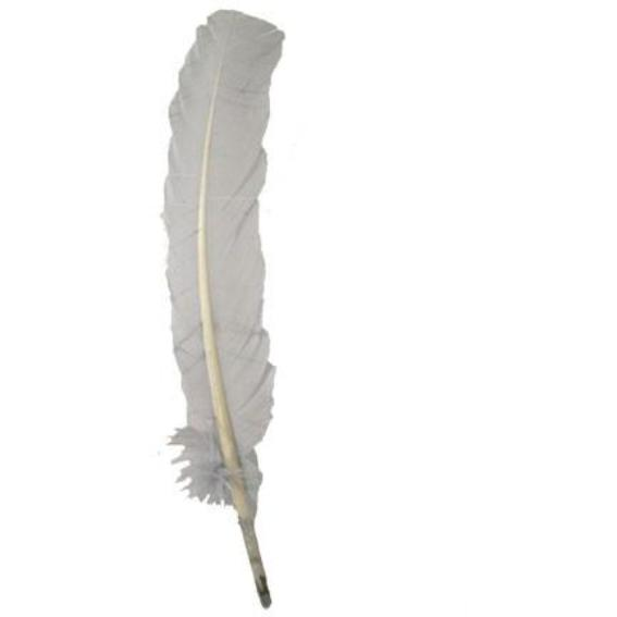 Turkey Wing Quill Feather x 5 pcs - Silver Grey ((SECONDS))
