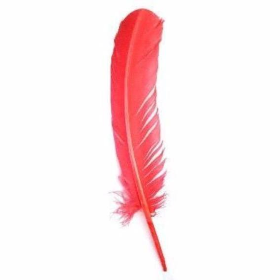 Turkey Wing Quill Feather x 5 pcs - Coral