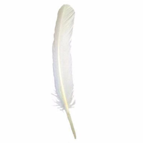 Turkey Wing Quill Feather x 5 pcs - Ivory ((SECONDS))