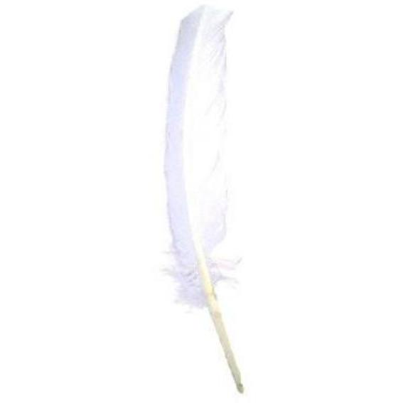 Turkey Wing Quill Feather x 5 pcs - White